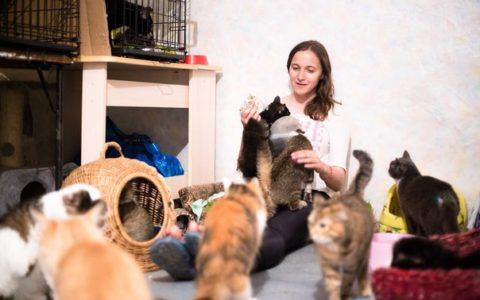 Галя Море - руководитель приюта для кошек Матроскин.